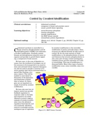 control by covalent modification - 8
