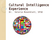Cultural Intelligence Experience