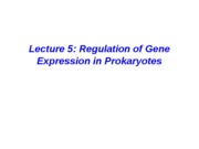 Prokaryotic Gene Regulation_Kieber 3.22-3.30