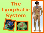 6 - Lymphatic System Class Notes (1) updated
