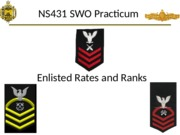 2- Enlisted Rates and Ranks