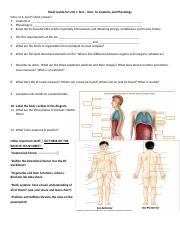 Study guide for anatomy test 1 | Coursework Academic Service ...