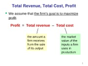 Notes09-Firm Costs