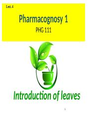 Lect 4 Introduction leaves.pptx