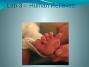 Lab3_HumanReflexes