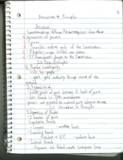 Structure & Principles Notes