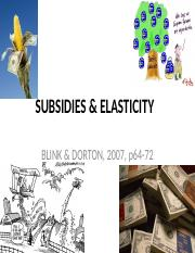 subsidy.pptx