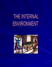 Lecture4Full (1) ppt - THE INTERNAL ENVIRONMENT The
