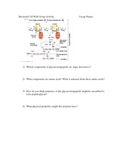 2. Bacterial Cell Wall Group Activity