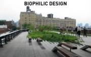 Lecture Biophilic design for Landscapes and Sustainability