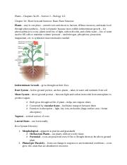 Plants Chapters 34-38