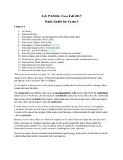 A&P Exam 2 Study Guide Chapters 6-9.docx