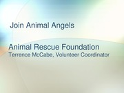 Powerpoint Join Animal Angels cit 101