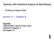 Stats 202 - Lecture 11