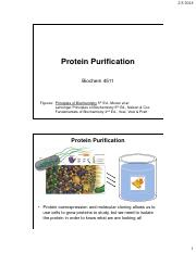 Chapter 4 Protein Purification.pdf