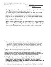 Worksheet 2 [answers].docx