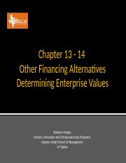 S17-3360-Spring 2017-Other Financing Alternatives-SecurityStructuresandDeterminingEnterpriseValues-
