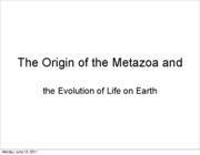 12 The Origin of the Metazoa