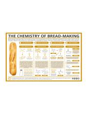 The-Chemistry-of-Bread-Making.png