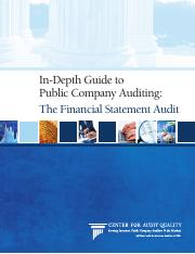 In depth guide to public company auditing.pdf