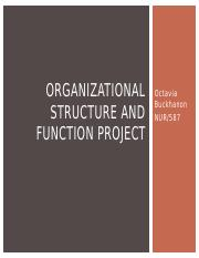 Organizational Structure and Function Project