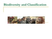 Pre IAQ 9.1 Classification and biodiversity.pdf