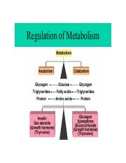Regulation of Metabolism 2.pdf