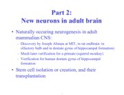 Neurons in brain notes