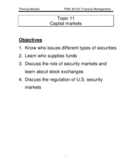 Topic11_cap_markets[1]
