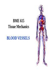 bloodvessels 15 class.ppt