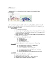 01 Cytology and Epithelium Objectives 2006