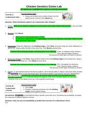 ChickenGenetics- Codominance.doc - Chicken Genetics Gizmo ...