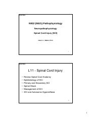 N932 SP2017 Sakai L11 Spinal Cord Injury use 2-Slide