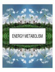 Lecture 4 - Energy
