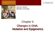 Chapter 6 — Changes in DNA