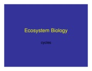 Lecture+9-10-08_Ecosystem+Biology-1
