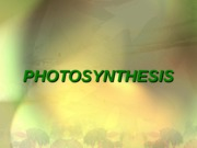photosynthesisppt