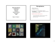 7 Phytoplankton_DAOSPR2011Notes