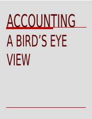 Accounting – A Bird's Eye View.pptx
