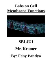 Cell Membrane Functions Lab.docx
