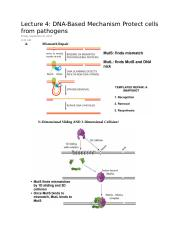 Lecture 4 DNA-Based Mechanism Protect cells from pathogens.docx
