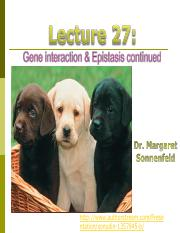 Lecture 27-epistasis II-post.pdf