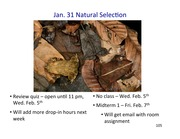 12 BIOL 1001M Mechanisms of Evolution (Natural Selection) (Jan. 31) post-lect
