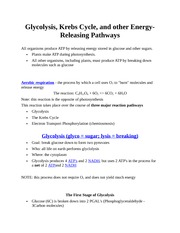 BIO 100 - Glycolysis, Krebs Cycle, and other Energy-Releasing Pathways - Class Notes