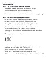 01.07 DBA and Exam Study Guide.docx