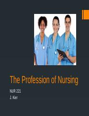 The Profession of Nursing(1)