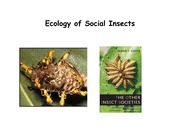 Lecture 6 - Social insects