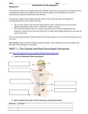Endocrine System Webquest