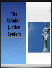 Topic 3 - The Criminal Justice System