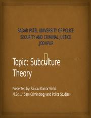 subculture theory saurav.pptx